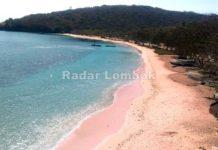Tarif Mahal Pantai Pink Terus Disorot