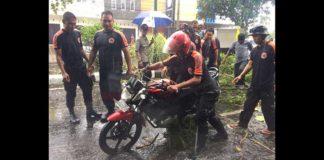 Mataram Hujan Deras, Seorang Pengendara Tertimpa Pohon