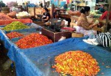 Kebutuhan Cabai Dipasok dari Pulau Jawa
